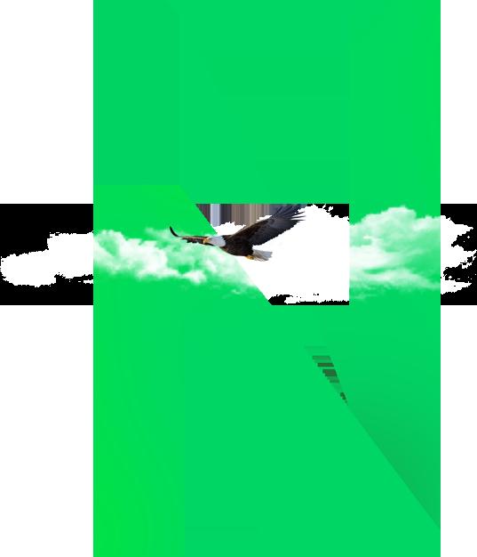nanda_orzel_grafika_sygnet_agencja reklamowa_marketingowa_marketing online_identyfikacja wizualna_zielona gora_projektowanie stron www